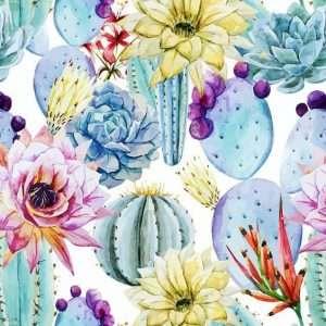 Carta da parati con cactus colorati