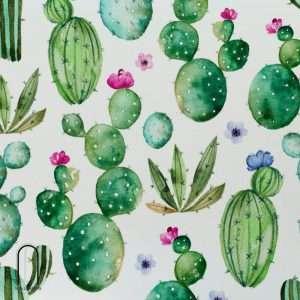 carta da parati cactus