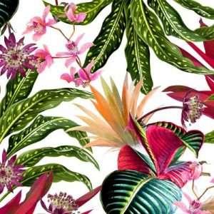 carte da parati stile tropical