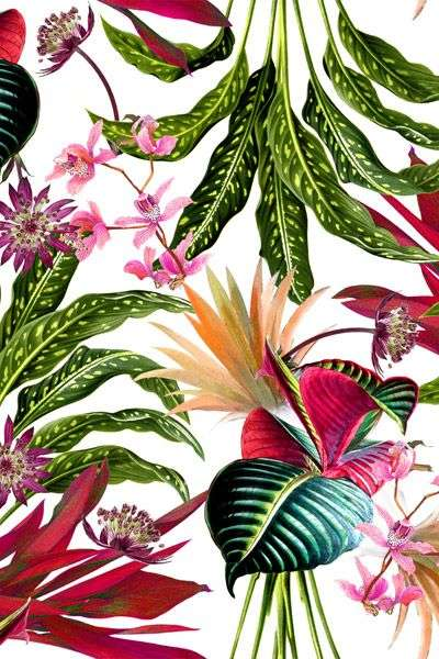 carte da parati stile tropical
