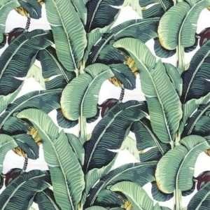carta da parati con foglia di banano