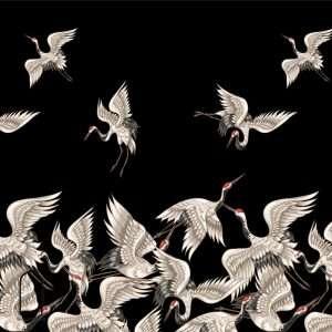 carta da parati uccelli