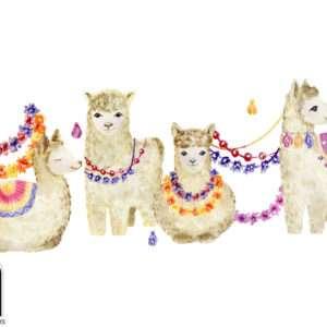 carta da parati cammelli ballerini