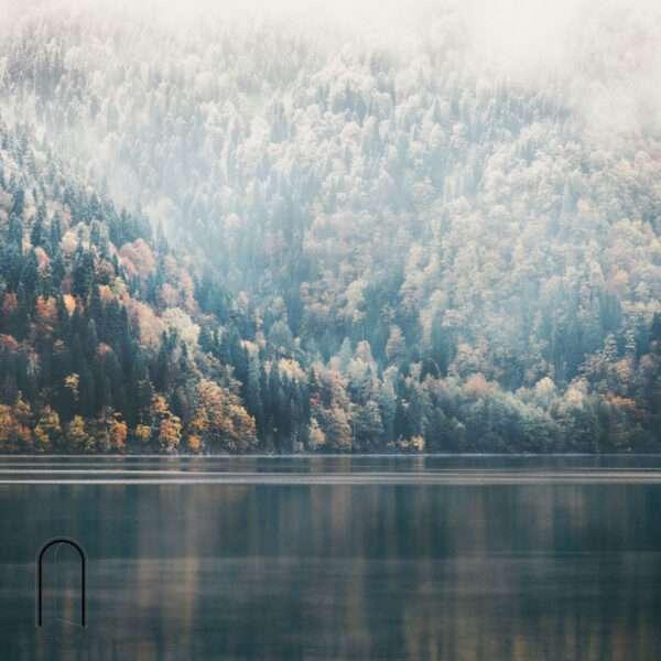 carte da parati fillyourhomewithlove linea foggy su lago