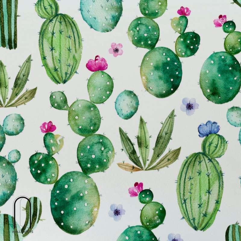 Carta da parati con le foglie e cactus
